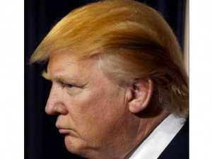 Trump Hair